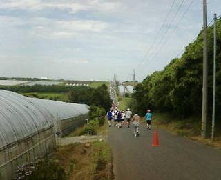 第21回 北栄町すいか・ながいも健康マラソン大会 10kmコース