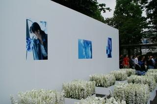 会場に展示された泉水さんの写真パネル