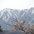 奥大山スキー場から望む大山